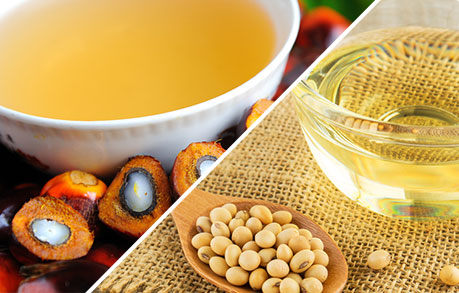 Curb illegal palm, soybean oil imports from Nepal: SOPA to